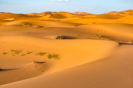 Beautiful landscape view of dunes Erg Chebbi, Sahara Desert, Merzouga, Morocco in Africa