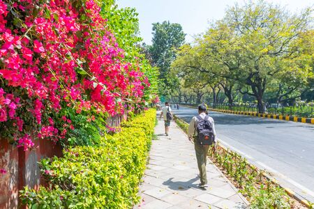 Lodhi Garden, New Delhi, India, 30 Mar 2019 - Beautuful Lodhi Garden with flowers, greenhouse, tombs and other sights, New Delhi, India 新聞圖片