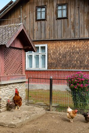 Typical rural architecture of Romania countryside with sunny green courtyard and tiled roof Reklamní fotografie - 132445118