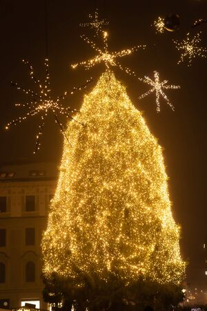 Fairytale Ljubljana city In Christmas Time with Christmas Tree, bridge and Christmas decoration, Slovenia.