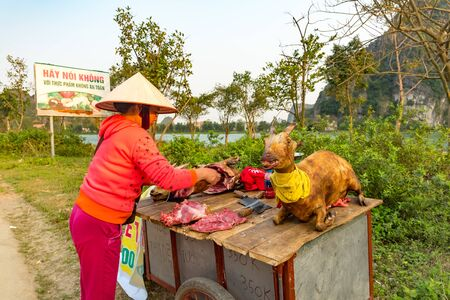 Ninh Binh, Vietnam, March 15 2018 - Vendors selling fresh meat from scary looking goats Reklamní fotografie - 143726489