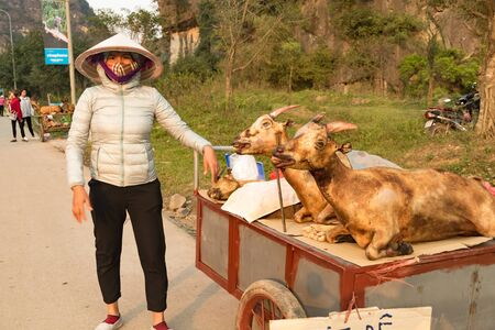 Ninh Binh, Vietnam, March 15 2018 - Vendors selling fresh meat from scary looking goats