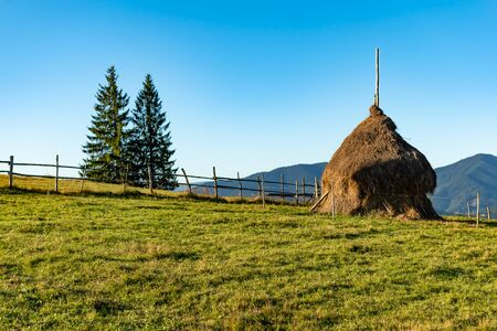 Beautiful mountain landscape with traditional piles of hay on meadow in Romania. 版權商用圖片