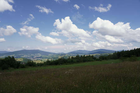 July in the Beskids, view from a mountain meadow on the forest, peaks and valleys, landscape