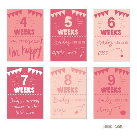 weeks: pregnancy 12 weeks Vector design templates for journal cards, scrapbooking cards, greeting cards, gift cards, patterns, blogging. Planner cards. Cute doodle. Printable templates set.