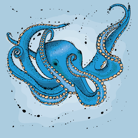Octopus.  Hand drawn vector illustration in watercolor style.