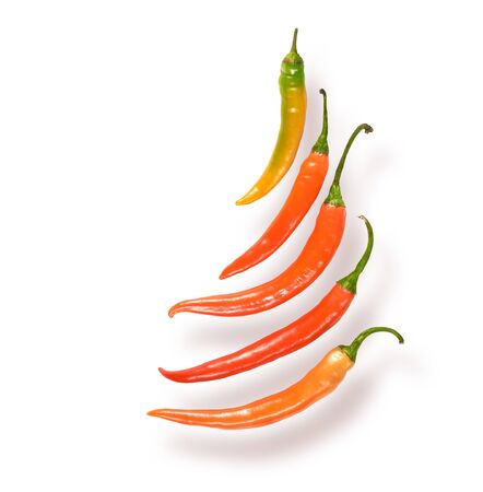 Chili peppers isolated on white background. Clipping path is included.