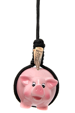 pink piggy bank with dollar and black gibbet