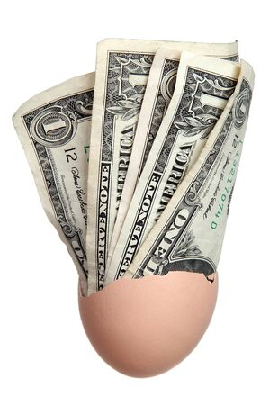 eggshell with dollar bank notes photo