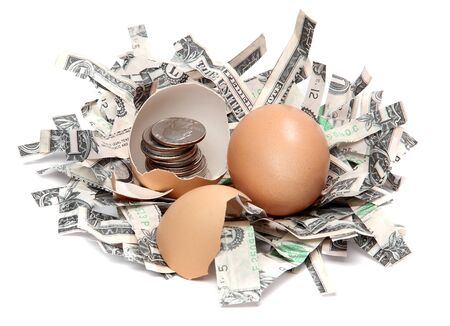 shredded dollars and eggshell with coins photo