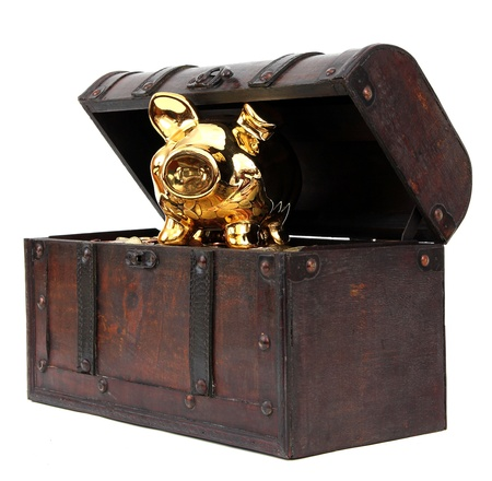 Open chest with piggy bank photo