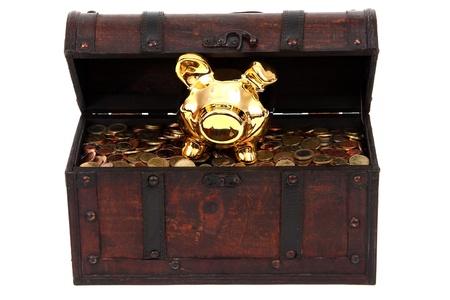 piggy bank inside treasure chest photo