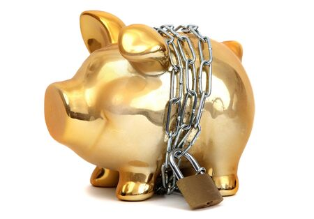 protected piggy bank Stock Photo - 12291030