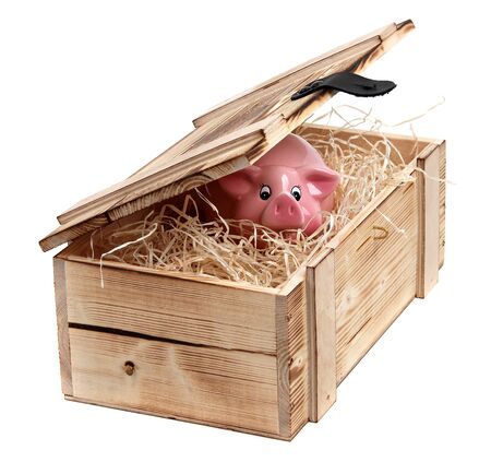 pink piggybank in box with wood-wool photo