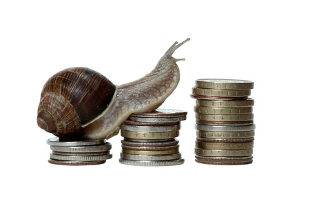 snail scrambles coins photo