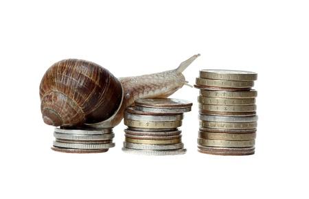 snail climbing coins Stock Photo