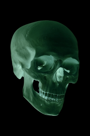 spooky green skull Stock Photo - 17612210