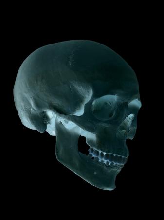 cranium: spooky blue cranium Stock Photo