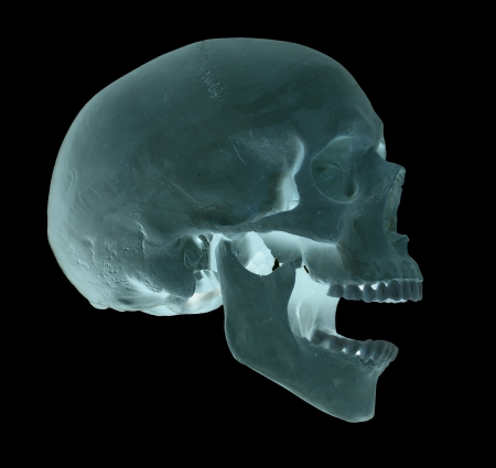 spooky screaming blue skull photo