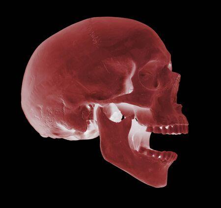 spooky screaming red skull Stock Photo - 17612222
