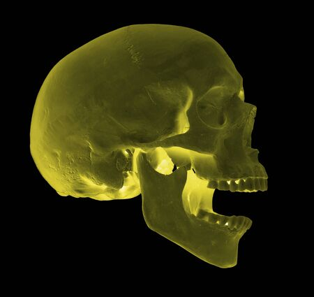 spooky screaming yellow skull Stock Photo - 17612220
