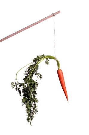 motivation with carrot on stick photo