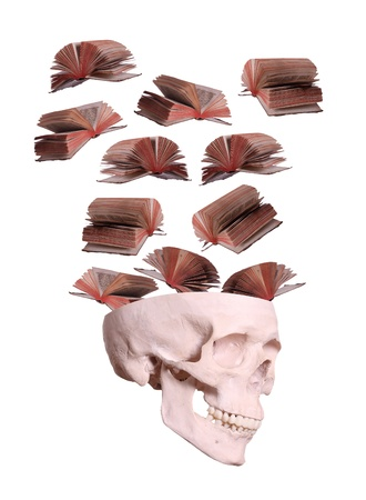 books flying out of skull on white photo