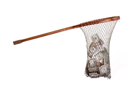 fishnet with dollars photo