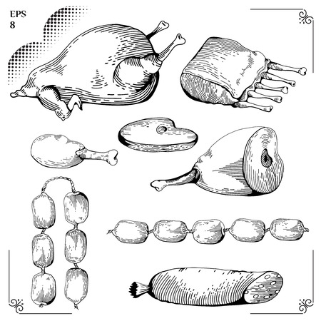 ribs: Chicken and Chicken leg, Gammon, Ribs, Sausage, Steaks. Cartoon illustration. Meat set. Graphics  picture. Engraving style. Eps 8