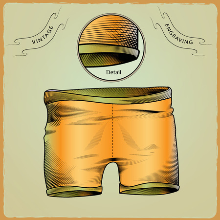 briefs: Clothes for swimmers. Sportswear. Water Sports. Swim briefs. Racing brief. Swimming in the pool. Color illustration in style of engraving Illustration