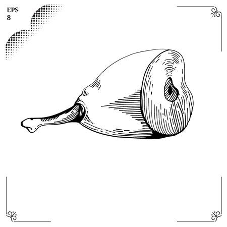 gammon: Gammon ilustraci�n de dibujos animados. Gr�ficos imagen. Estilo de grabado.