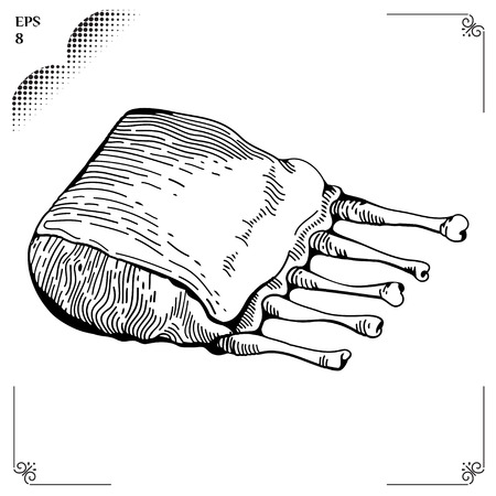 spare ribs: Ribs cartoon illustration. Graphics  picture. Engraving style.
