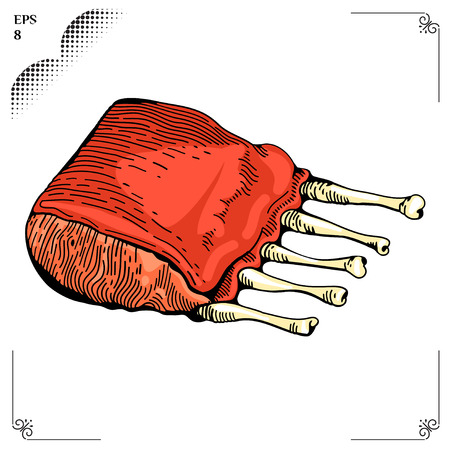 spare ribs: Ribs cartoon illustration. Multicolor  picture. Engraving style. Illustration