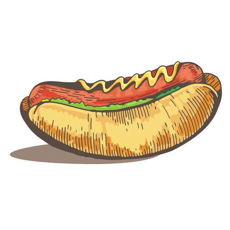 Hot dog. Fast food delicious. Menu design. Hand drawn illustrations. Vintage Hot dog poster. Vector image of engraving on white background. Eps 8 Vector