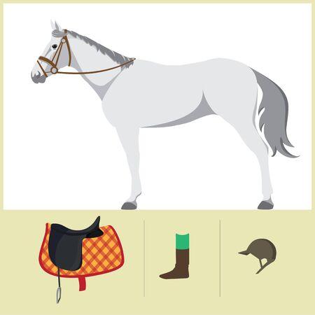 thoroughbred horse: Derby. Deporte ecuestre. Ilustraci�n del vector del caballo. Caballo de pura sangre. El deporte de los reyes. Caballo con silla