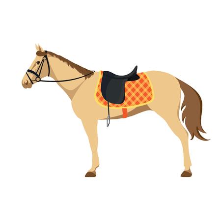 thoroughbred horse: Deporte ecuestre. Ilustraci�n de caballo. Vector. Caballo de pura sangre. El deporte de los reyes
