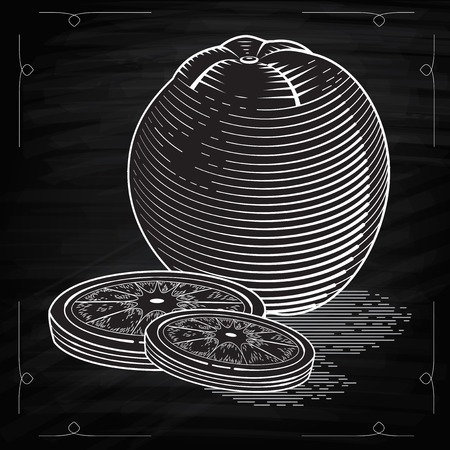 designe: Concept Illustration of orange with slices. Vector vintage fruit. Stylized drawing hands. Engraving image of food. Drawing with chalk on Chalkboard drawing for cafe designe
