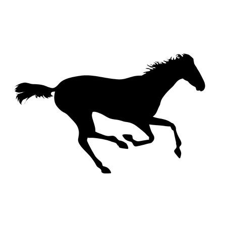 carreras de caballos: Imágenes vectoriales caballos. Dibujos de la silueta del caballo. carteles de caballos. Ejecución de la silueta del caballo. Silueta de una cabeza de caballo