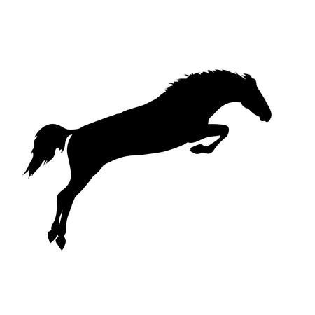 carreras de caballos: Im�genes vectoriales caballos. Dibujos de la silueta del caballo. carteles de caballos. Ejecuci�n de la silueta del caballo. Silueta de una cabeza de caballo. El caballo que salta