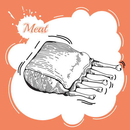 spare ribs: Meat hand drawn. Meat collages. Illustration of a steak meat. Vector hand drawn meat elements. Business lunch. BBQ Ribs. Barbecued Spare Ribs