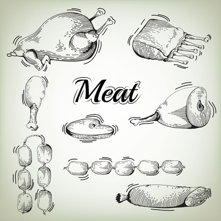 cooked meat: meat hand drawn collection. Meat collages. illustration of a set of different kinds of meat. Vector hand drawn meat and sausage elements set Illustration