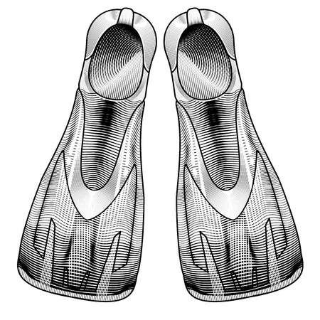 flippers: Clothes for swimmers. Vector Sportswear. Accessories for Water Sports. Vector Flippers. flippers for diving. Accessories for swimming an engraving style