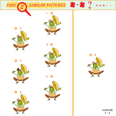 mere: Find two similar pictures. Puzzle or picture riddle. Education matching game for preschool children. Cartoon frog. Answer included
