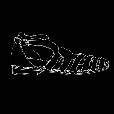 women's shoes: trendy fashion shoes. Vector Hand drawn illustration. womens shoes on chalkboard. woman shoe icon. Summer womens shoes. Sandals Vector Hand drawn illustration Illustration