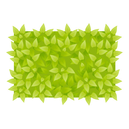 botanic: Vector grass background. Grass rectangle shape. Green leaves texture. Eco floral banner. Organic or botanic background. Rectangle of green leaves banner