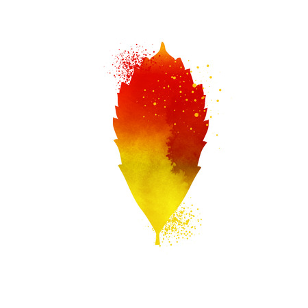 dry leaf: Watercolor autumn leaf vector. Yellow autumn leaf isolated on white background. Orange dry leaf symbol. Autumn leaf icon. Hand draw realistic leaf. Nature element for background or design Illustration
