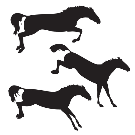 trotter: Silhouettes of horses. Black horses on isolated background. Set of wild horses. Vector horse collection. Collection of horse race, horse jump and horse run