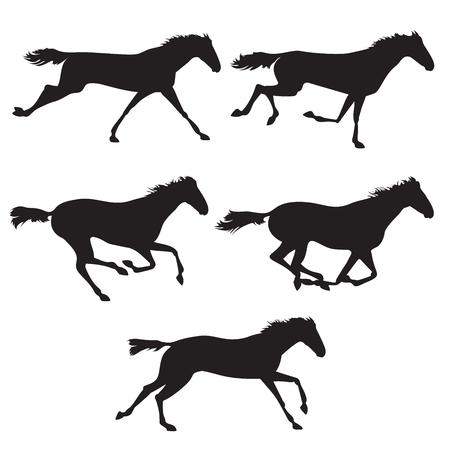 Raccolta di corsa di cavalli, cavallo a saltare e correre il cavallo. Sagome di cavalli. cavalli neri su sfondo isolato. Set di cavalli selvaggi. Vector cavallo collezione