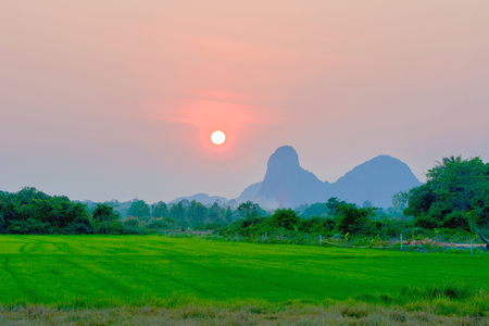 sunset over rice farms and mountain in thailand
