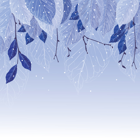 Leaves covered with frost, winter background. Frozen leaves, blue colors, the trees, snowing. Beautiful background for your design.